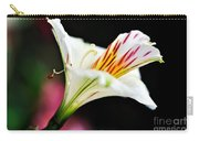 Princess Lily Awakening Carry-all Pouch by Kaye Menner