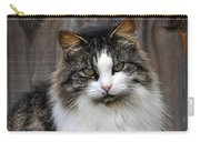 Princess Pose Carry-all Pouch by Al Powell Photography USA