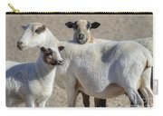 Professional Sheep Carry-all Pouch