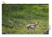 Pronghorn Antelope Among Wildflowers Carry-all Pouch