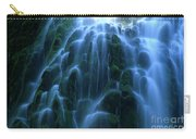 Proxy Falls Detail 2 Carry-all Pouch