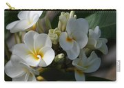 Pua Melia Na Puakea Onaona Tropical Plumeria Carry-all Pouch