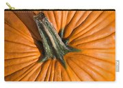 Pumpkin Aerial View Carry-all Pouch