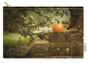 Pumpkin Carry-all Pouch by Amanda Elwell