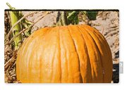 Pumpkin Growing In Pumpkin Field Carry-all Pouch