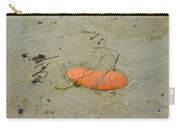 Pumpkin In The Sand Carry-all Pouch