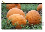 Pumpkin Pie Carry-all Pouch