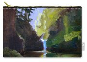Punch Bowl Falls Carry-all Pouch