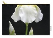 Purity Carry-all Pouch