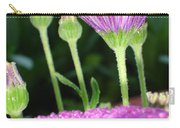 Purple And Pink Daisy Flower In Full Bloom Carry-all Pouch