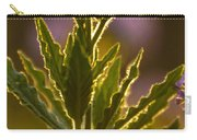 Purple Backlit Carry-all Pouch