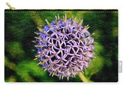 Purple Ball Carry-all Pouch
