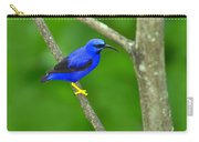 Purple Honeycreeper Carry-all Pouch