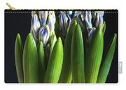 Purple Hyacinth Ready For Spring. Carry-all Pouch