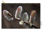 Pussy Willows Carry-all Pouch by John Haldane