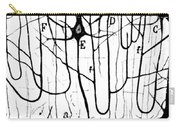 Pyramidal Cells Illustrated By Cajal Carry-all Pouch by Science Source