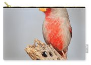 Pyrrhuloxia On Cholla Rib Carry-all Pouch