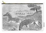 Quagga, Historical Illustration, 1869 Carry-all Pouch