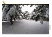 Queen City Winter Wonderland After The Storm Series 0030 Carry-all Pouch