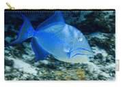 Queen Triggerfish Carry-all Pouch