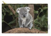 Queensland Koala Juvenile Australia Carry-all Pouch
