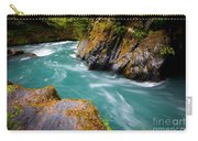 Quinault River Bend Carry-all Pouch