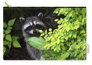 Raccoon Peek-a-boo Carry-all Pouch
