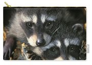 Raccoon Young Procyon Lotor In Tree Carry-all Pouch