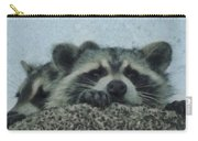 Raccoons Painterly Carry-all Pouch