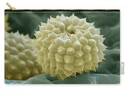 Ragweed Pollen Carry-all Pouch