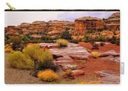 Rain At The Needles District 2 Carry-all Pouch