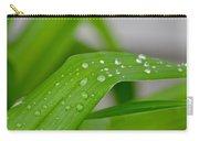 Rain Beads IIi Carry-all Pouch