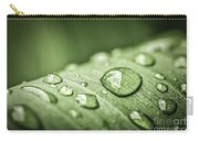 Rain Drops On Green Leaf Carry-all Pouch by Elena Elisseeva