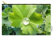 Raindrops On Leaves Carry-all Pouch