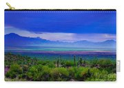 Rainbow Desert Landscape Carry-all Pouch
