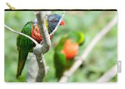 Rainbow Lorikeet Parrot Trichoglossus Haematodus Carry-all Pouch