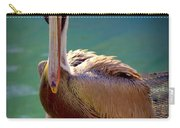 Rainbow Pelican Carry-all Pouch by Karen Wiles