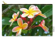 Rainbow Plumeria - No 4 Carry-all Pouch