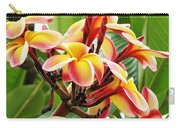 Rainbow Plumeria - 1 Carry-all Pouch