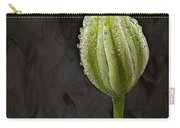 Raindrops Keep Falling Carry-all Pouch