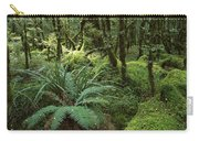 Rainforest In Fjordland National Park Carry-all Pouch