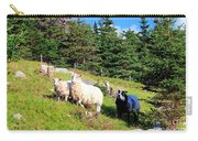 Ram And Ewes Carry-all Pouch