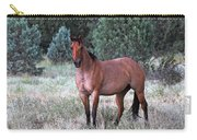 Ranch Horse Young Arizona Carry-all Pouch