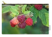 Rasberries Carry-all Pouch
