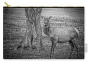 Raspberry Elk Black And White Carry-all Pouch