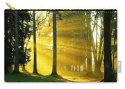 Rays Of Sun Carry-all Pouch
