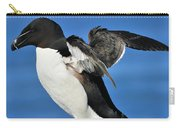 Razorbill Carry-all Pouch by Tony Beck