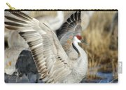 Ready To Fly Carry-all Pouch