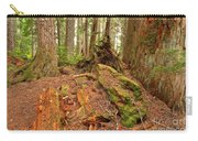Recycling In The Cheakamus Rainforest Carry-all Pouch