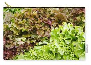 Red And Green Leaf Lettuce  Carry-all Pouch